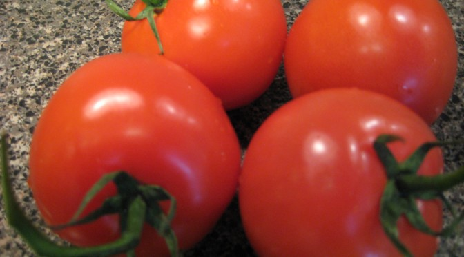 Tomato Time Planting Tips
