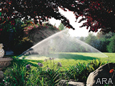 Secrets from the Pros for a Lush Lawn and Landscape