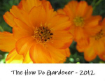 The How Do Gardener 2012 Calendar