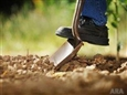 Make Calling 811 a Priority Before Every Digging Project