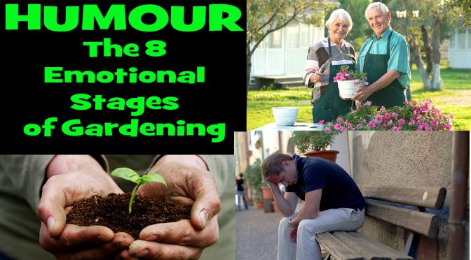 The 8 Stages of Gardening